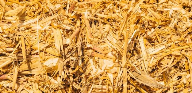 Textur des heuhaufens. hintergrund des trockenen gelben heus. landwirtschaftliche industrie.