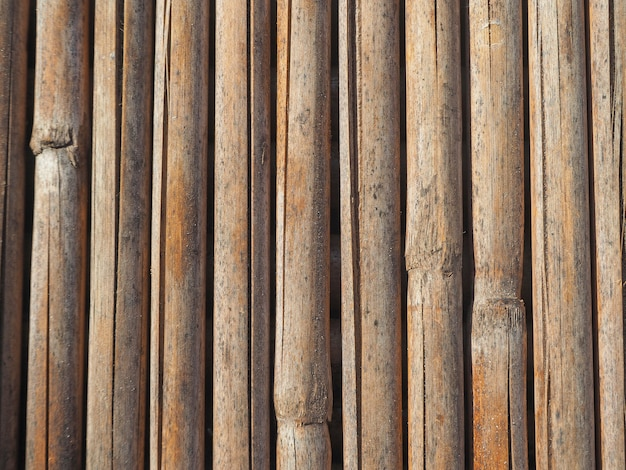Textur von getrockneten bambusstöcken