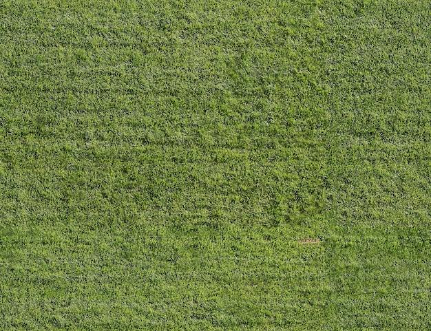 Textur von grünem gras auf dem rasen, nahtlos