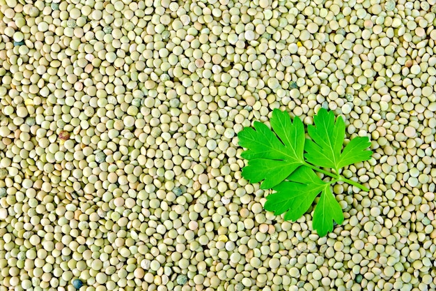 Textur von grünen bohnen linsen mit petersilienblatt