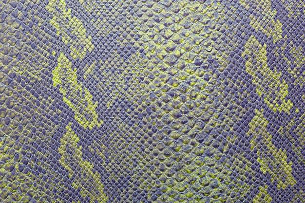 Textur von schlangenhaut in lebendigen farben
