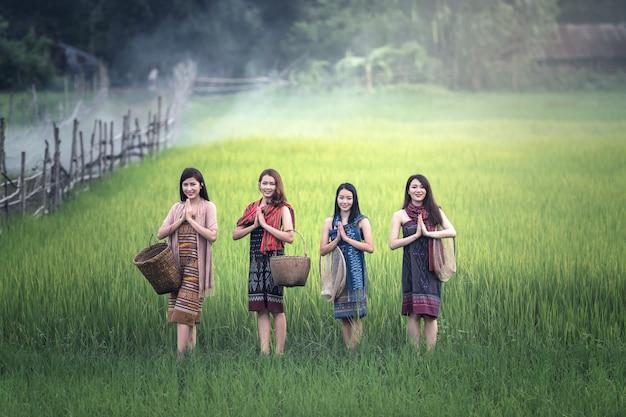 Thailändische frauen begrüßen sawasdee am reisfeld, landschaft von thailand