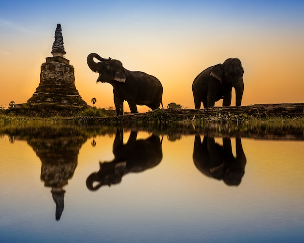 Thailändische landschaft des sonnenuntergangs in thailand