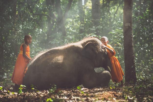 Thailändische mönche, die im dschungel mit babyelefanten gehen