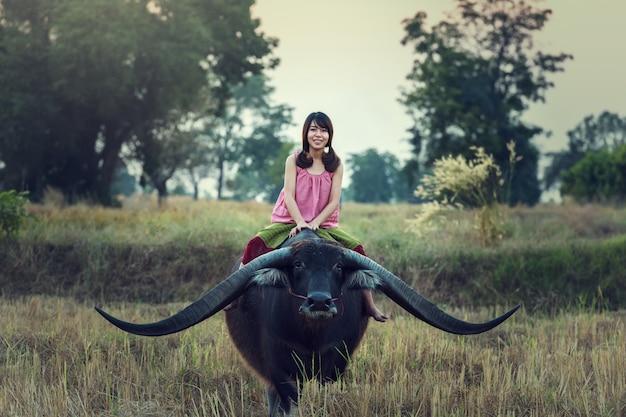 (thailändischer) landwirt der asiatin mit einem büffel auf dem gebiet