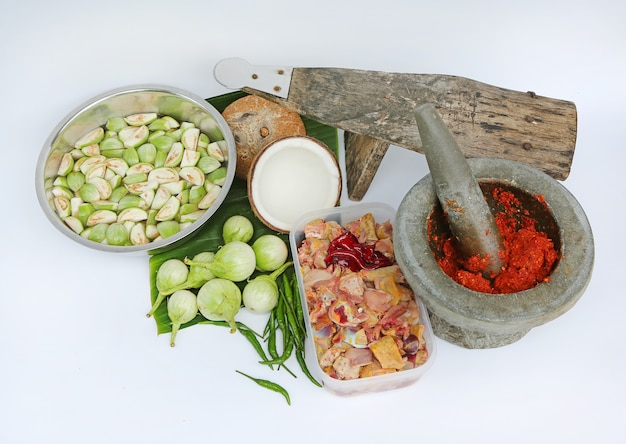Thailändisches essen mit rohem curry, auberginen, chili, curry, hühnchenscheiben, kokos- und kokosraspel