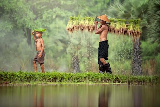 Thailand bauer arbeiter