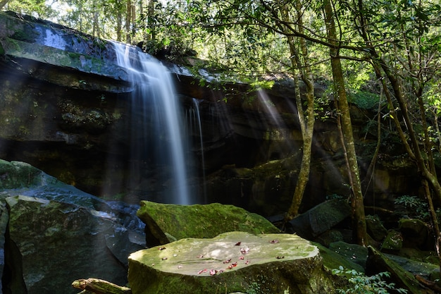 Tham yai wasserfall im nationalpark phu kradueng, provinz loei