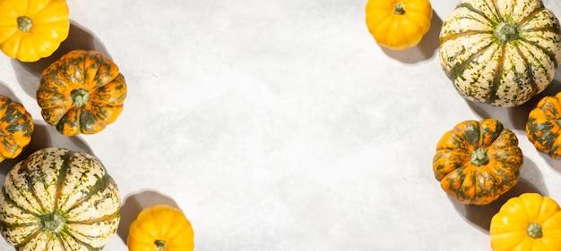 Thanksgiving day hintergrund, kleine kürbisse auf weißem tisch in rahmenform, herbstferien feiern, festivalkonzept, herbsterntebanner