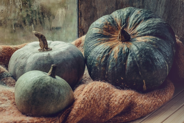 Thanksgiving day-konzept. gemütliches zusammensetzungsstillleben nahe fenster