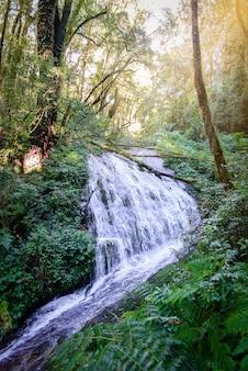 Tharn sadet wasserfall in kew mae pan nature trail trekkingpfad, der durch den dschungel führt