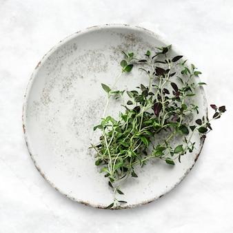 Thymianblätter flach legen lebensmittelfotografie