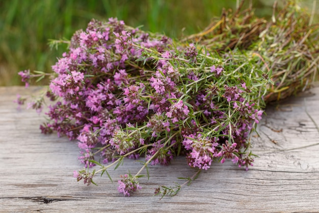 Thymianblumen auf holzbrettern und natürlichem hintergrund.