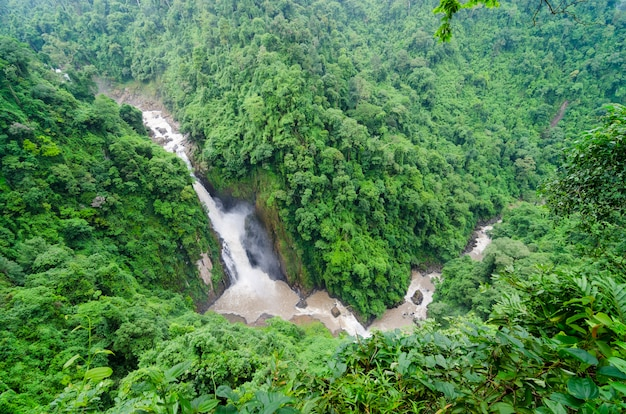 Tiefer waldwasserfall an khao yai nationalpark nakhonnayok thailand