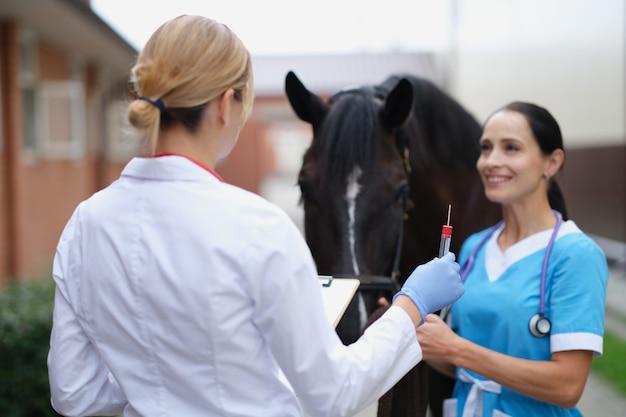 Tierarzt, der der krankenschwester ein reagenzglas gibt, um einen tupfer von der pferdenase zu nehmen