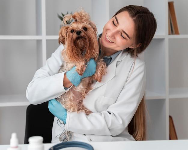 Tierarzt, der die gesundheit des welpen überprüft