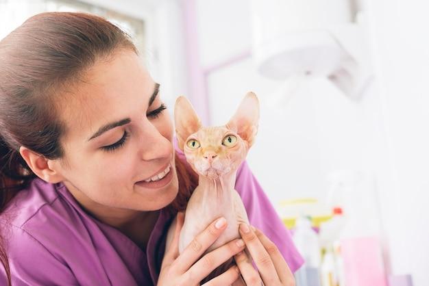 Tierarzt, der eine kleine katze umarmt. veterinär-konzept.