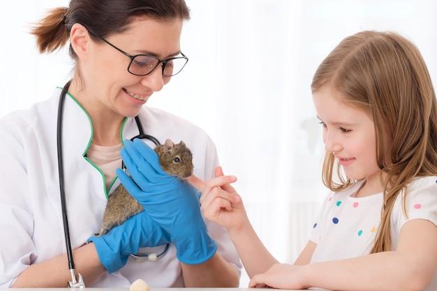 Tierarzt unterrichtet kleines mädchen über ihr haustier