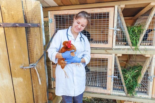 Tierarztfrau mit stethoskop, das huhn auf ranch hält und untersucht