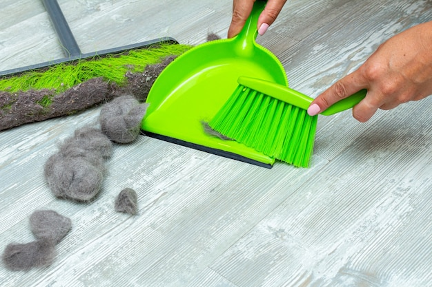 Tierhaare, fell mit händen, mopp, bürste und kehrschaufel reinigen