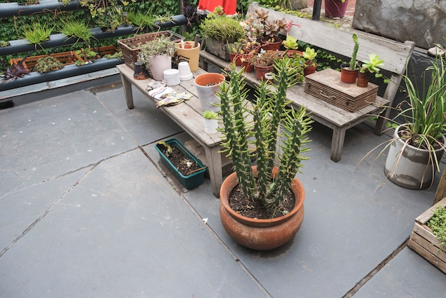 Tisch und bank voller pflanzen