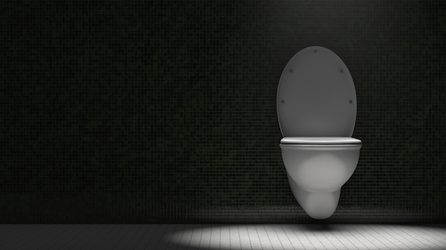 Toilettenschüssel in der toilette. dramatische beleuchtung. speicherplatz kopieren.