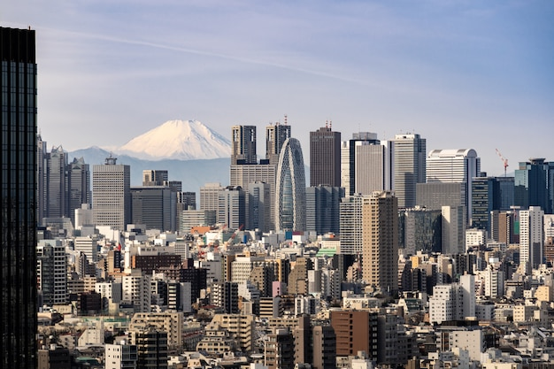 Tokyo-skyline und berg fuji in japan.