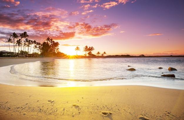 Toller hawaiianischer strand