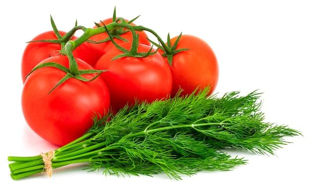 Tomate und dill isoliert auf weiß.
