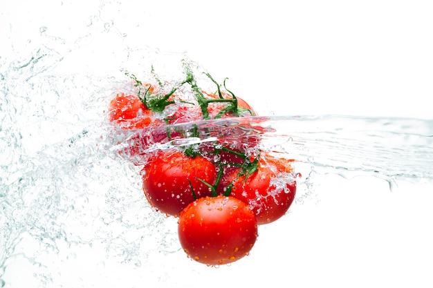 Tomaten auf einem ast in einem wasserstrahl auf weißem hintergrund isolieren