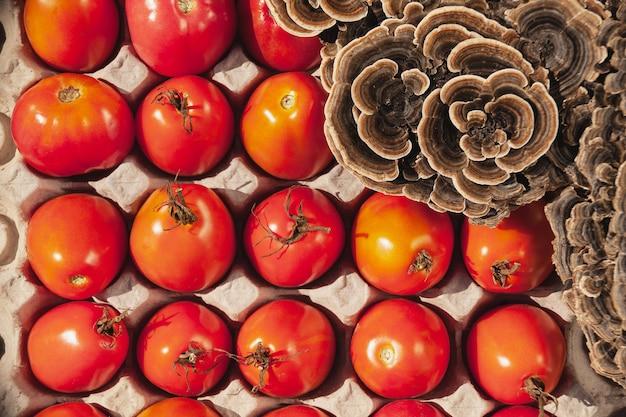 Tomaten und geschnittene giftige pilze befinden sich in einem eierkarton.