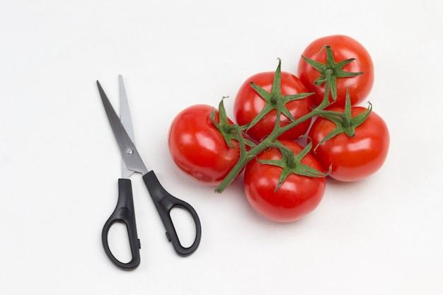 Tomatenzweig und schere. weißer hintergrund. flach liegen