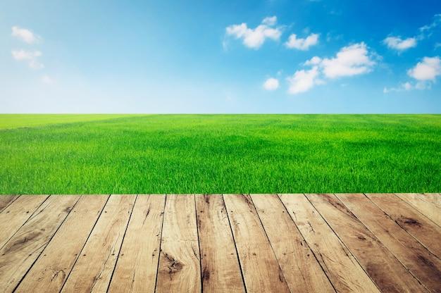 Top leeres holz mit grünem gras und blauem himmelhintergrund