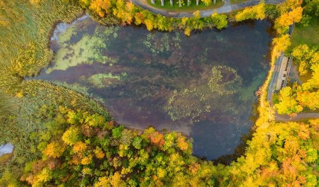 Top luftbild panorama einen schönen ruhigen see in der landschaft des waldes im herbst aus der höhe