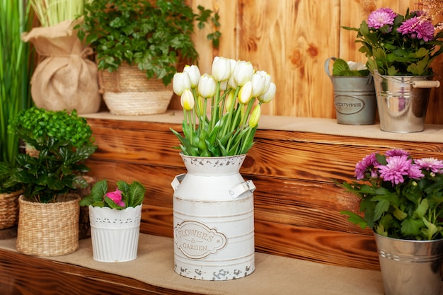 Topf herbst chrysanthemen. strauß tulpen in einer vase. gemütliche einrichtung nach hause. dorfterrasse.