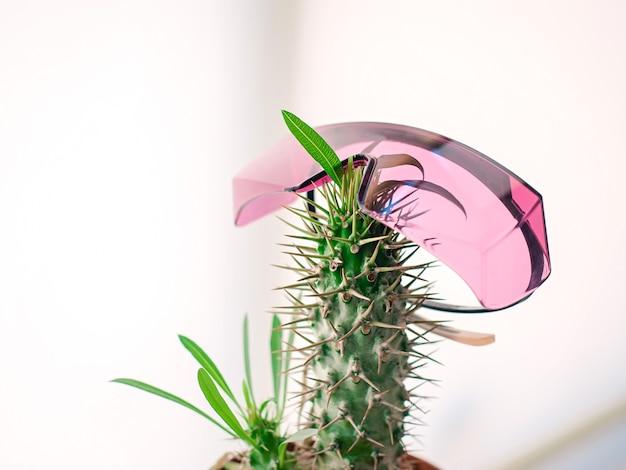 Topf mit kaktus mit pinker protect laser-epilationsbrille haarentfernungs-laser-epilationsspaß