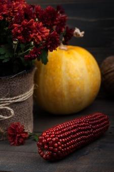 Topf rote chrysanthemenblumen