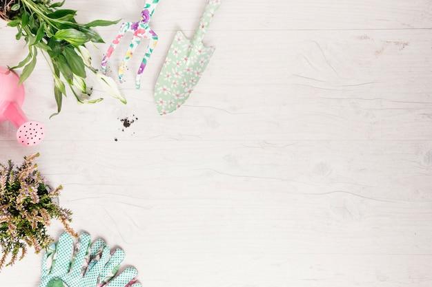 Topfpflanze mit gartengeräte auf weißem holztisch