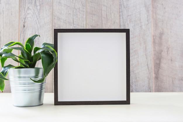 Topfpflanze nahe dem fotorahmen auf weißer tabelle