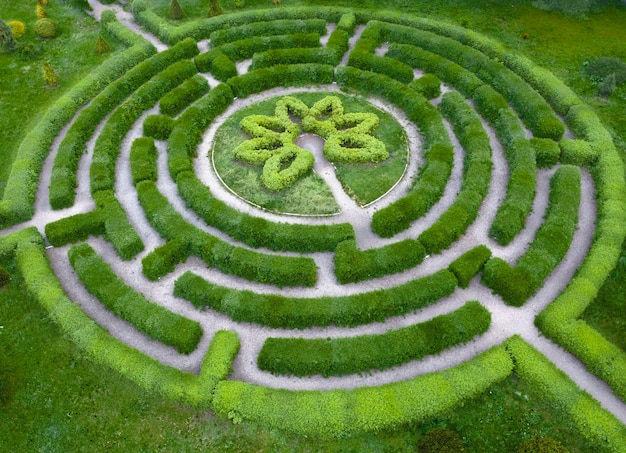 Topiary garten in form eines labyrinths, im botanischen garten grishka in kiew.