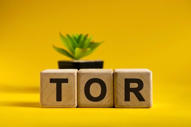 Tor-text auf holzwürfeln auf einer hellen oberfläche und einem schwarzen topf mit einer blume dahinter