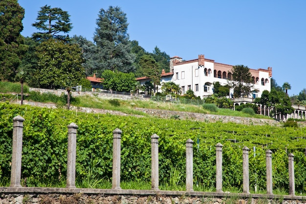 Toskana, italien. italienische luxusvilla auf dem land, in der nähe eines lambrusco-weinbergs