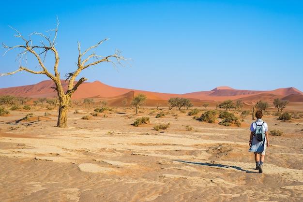 Tourist, der in die majestätische namibische wüste, sossusvlei geht