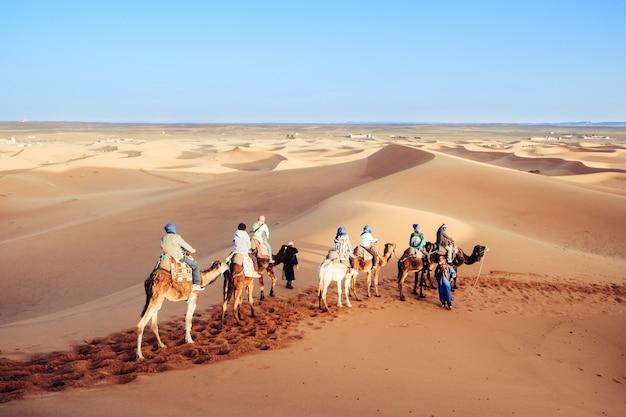 Touristen, die mit kamelkarawane in der sahara-wüste genießen. erg shebbi, merzouga, marokko.