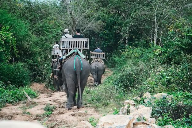 Touristen reiten elefanten im wilden wald, auf dem fluss und im elephant park. menschen sitzen auf elefantenrücken in wunderschönen grünen asiatischen landschaften. laos. luang prabang Premium Fotos