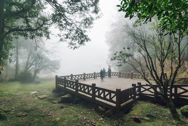 Touristengruppe, die auf hölzerner plattform mit zedernbäumen und nebel im hintergrund im wald im alishan national forest erholungsgebiet im winter im chiayi county, alishan township, taiwan steht.
