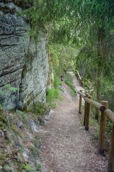 Touristische spur mit weg nahe sandsteinklippen. die klippe von sietiniezis, lettland. gauja-nationalpark.