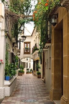 Traditionelle dorfhäuser und gasse in der altstadt von marbella