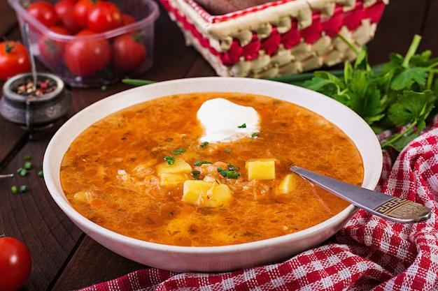 Traditionelle russische suppe mit kohl - sauerkrautsuppe - shchi.