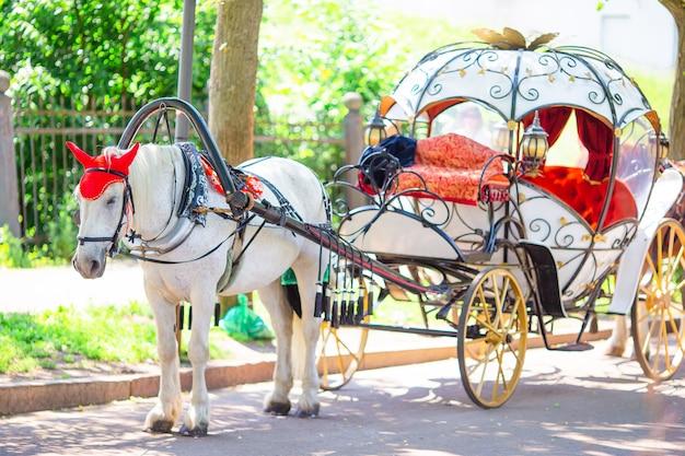 Traditioneller pferdekutschenfiaker in europa